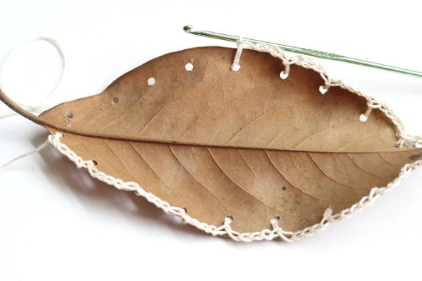 susanna-bauer-anallasa-18